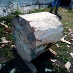 Cortador de troncos en una Finca en Segovia _1