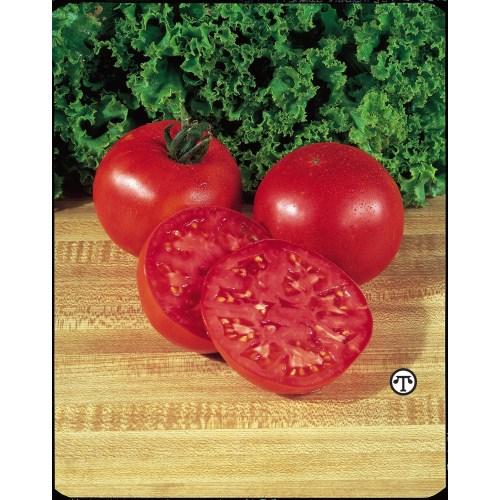 Medium Crop Of Big Boy Tomato