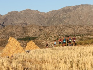 The leading contenders run through a harvested field of lucerne during Stage 3 of the 2017 Tankwa Trail. Photo by Oakpics.com.
