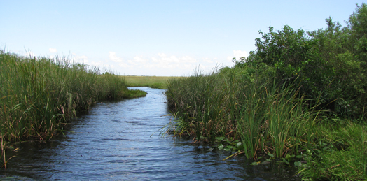 Everglades National Park Protection and Expansion Act
