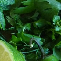 Cilantro Mint Chutney with Chili & Lime