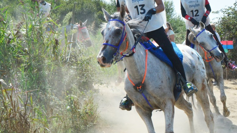 Paula Muntala Sanchez (ESP), aged 21, riding 10-year old part-Arabian Echo Falls secured individual gold and also guided her team to gold at the 120km FEI European Endurance Championship for Young Riders and Juniors in Rio Frio, Portugal on 3 September. (FEI/Endurance in the World)