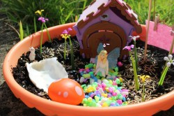 Small Of Fairy Garden Instructions