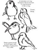 Scribbly Birds