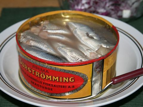 open can of surströmming