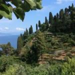 Natural Park of Portofino