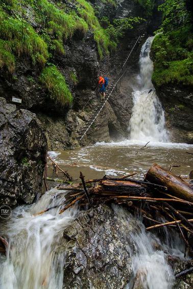In the gorge - © Andrej Pižem
