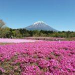 Pakej Murah Ke Jepun – Tokyo & Osaka