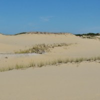 In the Province Lands Dunes