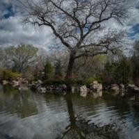 Sasebo Japanese Gardens, Albuquerque, New Mexico