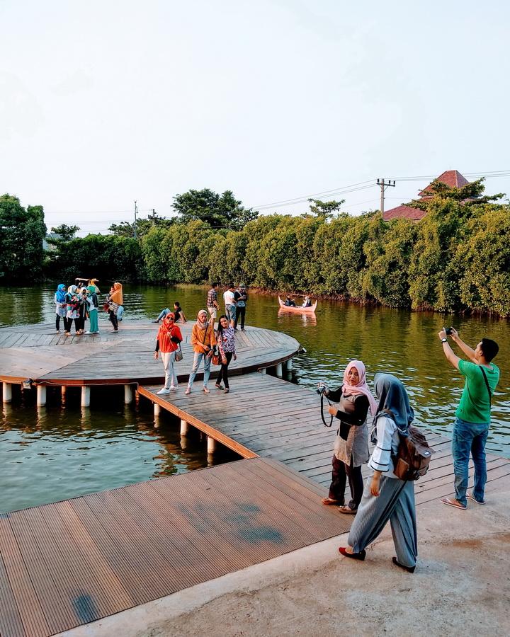 Keriaan mangrove maerakaca