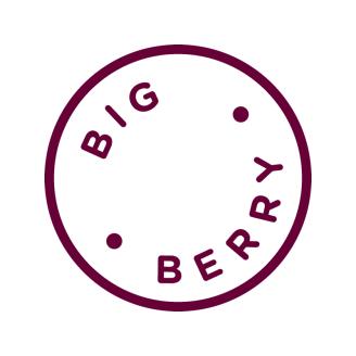 Exploring Kiwis Partnerships BigBerry
