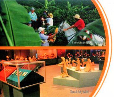 Plantación de café, Valle Central / Museo de Jade, San José