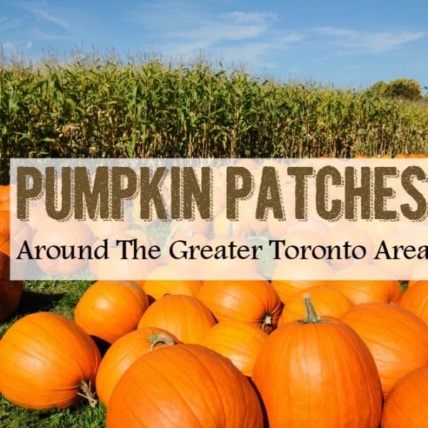 Pumpkin Patches Around The Greater Toronto Area