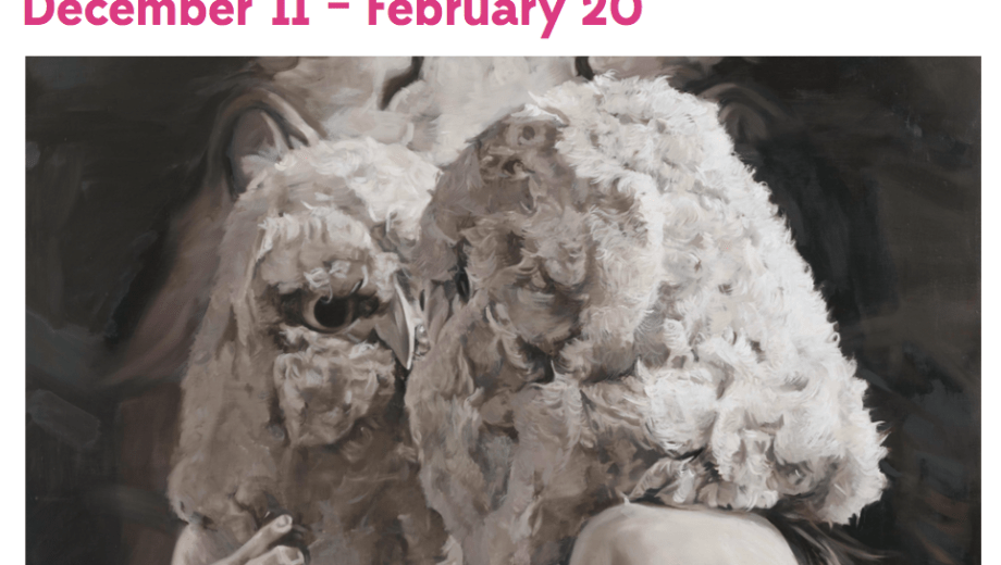 Creature Comforts: December 11 – February 1st