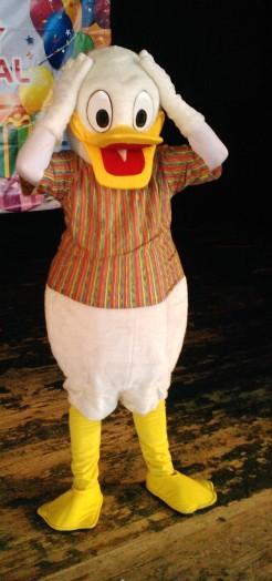 Kačer Ronald