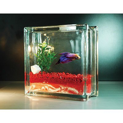 Fishy Mother's Day Gifts And The Coolest Fish Bowls Too