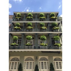 Small Crop Of Hanging Gardens Images