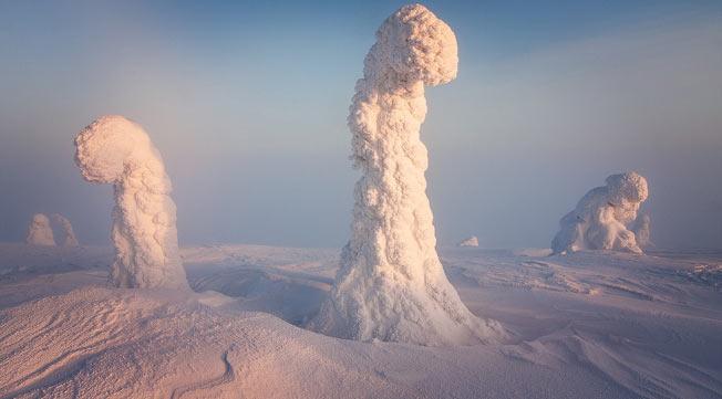 Spøkelses trær i Finland