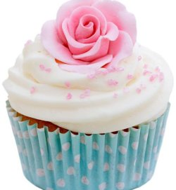 Welcome to FabuliciousCupcakes!