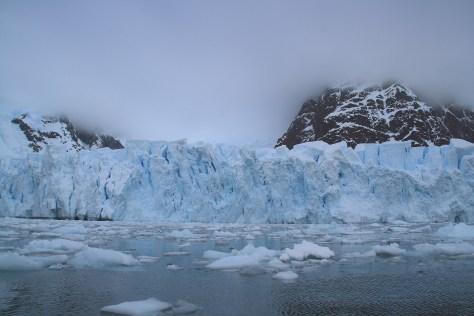 Glacier on Paradise Bay - Antarctica