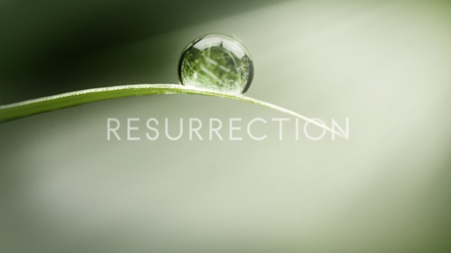 Resurrection Logo