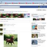 Horsebook