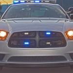 """On Patrol"" April Report"