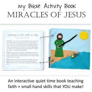 Felt Bible Activity Books: Miracles of Jesus (L2V1)