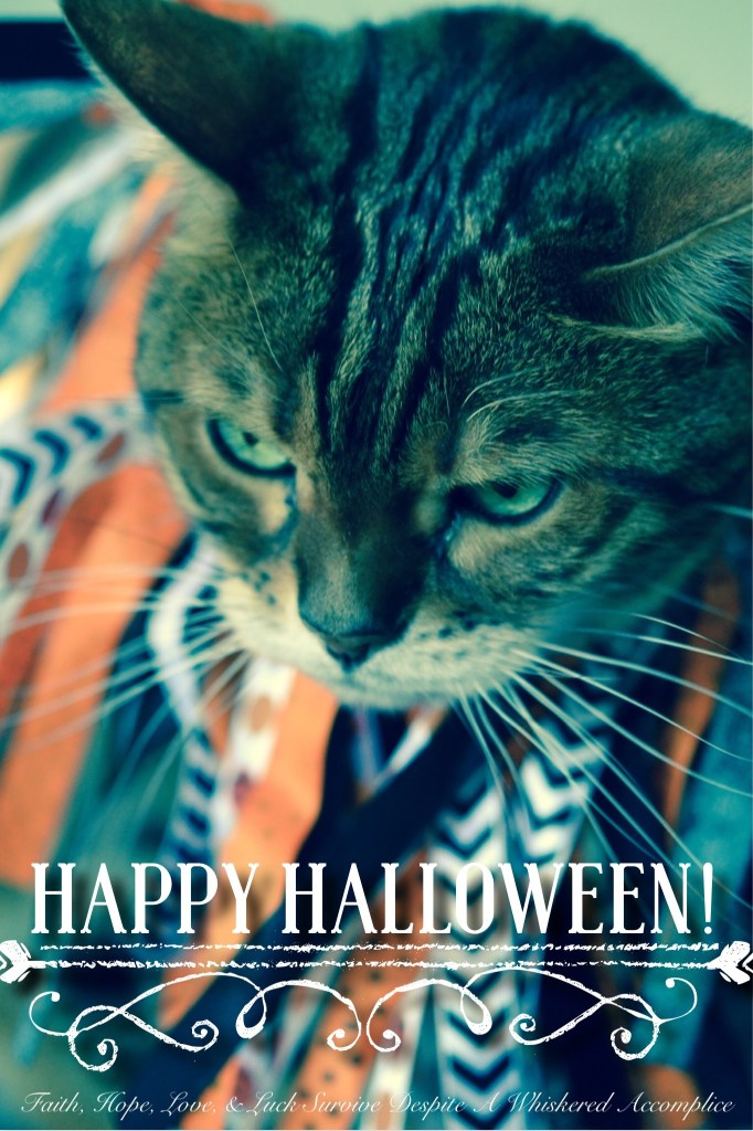 2014 Halloween Brenna | Faith, Hope, Love, and Luck Survive Despite a Whiskered Accomplice