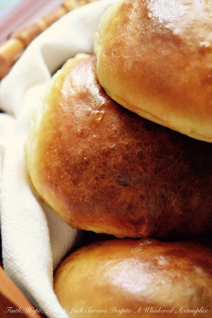 Buns for When Pigs Fly | Faith, Hope, Love, and Luck Survive Despite a Whiskered Accomplice