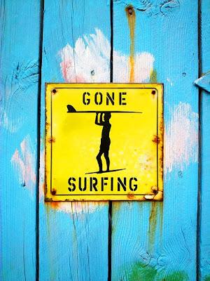 gonesurfing
