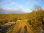 Camino (Montes de Oca)