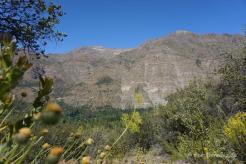 In San Alfonso im Cajon de Maipo