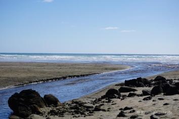 Bethells Beach nahe Auckland
