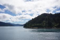 Überfahrt zur Südinsel/ MMarlborough-Sound