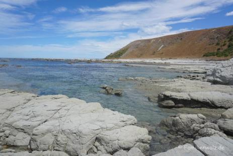 Point Kean, Kaikoura/ Südinsel