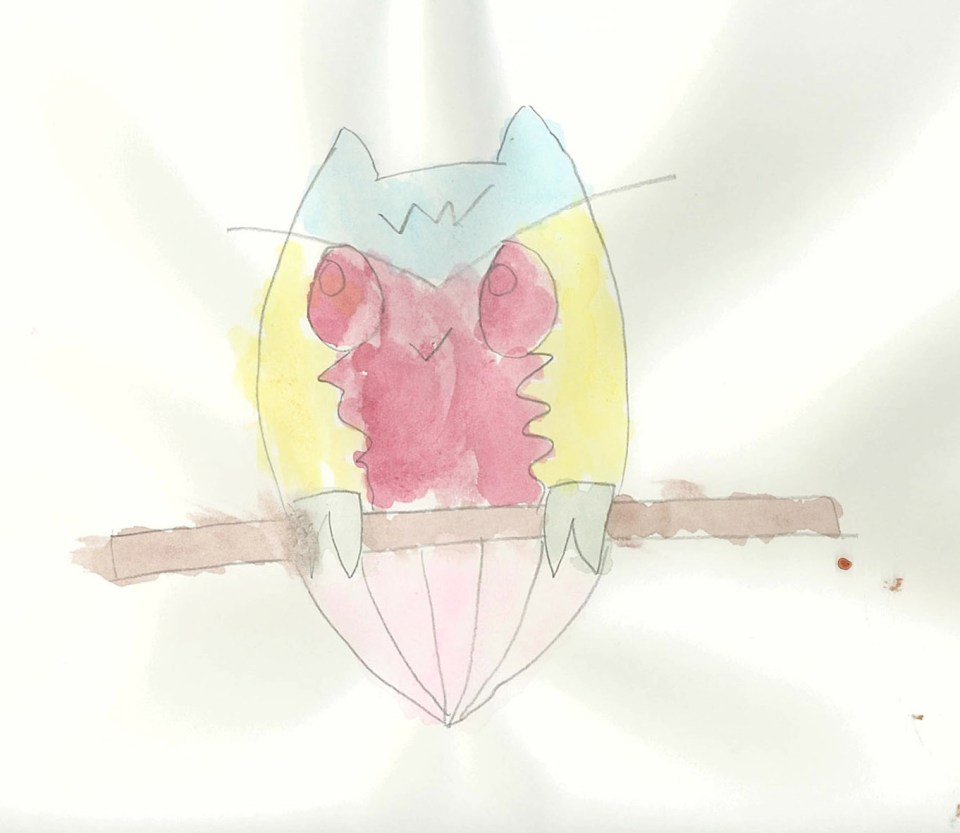 Owl, Caedryn Pierce, Watercolor and Pencil on Paper, June 2014