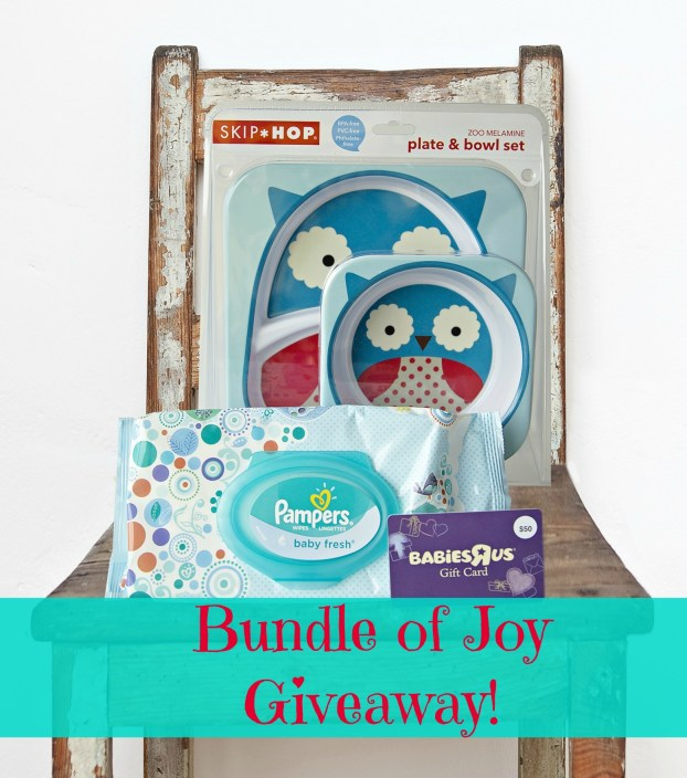 "Meet Lianna Grethel at the Babies""R""Us (Giveaway) -FamilyisFamilia.com"