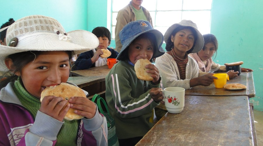 Providing Nutrition and Combatting Childhood Hunger in Bolivia: The Partnership between  Truvia and the World Food Programme