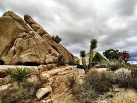 Jumbo Rocks, Joshua Tree site #68