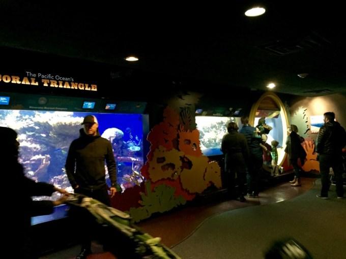 NY Aquarium Conservation Hall