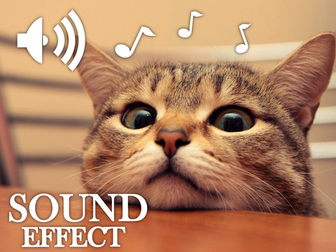 Animals Cute Sounds Collection HD iPad App Review