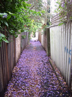 back lane - Newtown