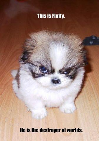 Fluffy, el perro destructor de mundos