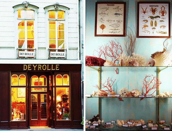 Deyrolle (Paris)