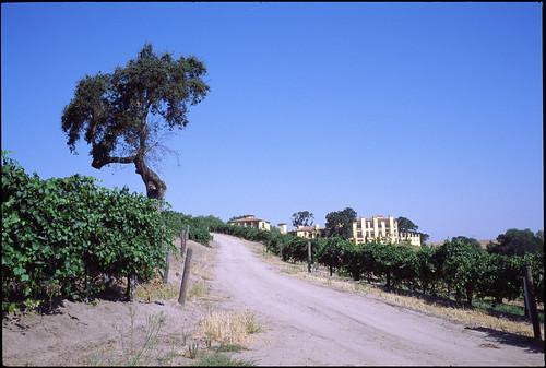 CA Paso Robles 0507-02-G1-35