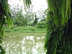 Bangla Daze. (4/6)