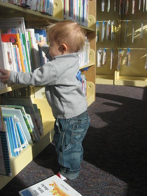 Taking Books Off Shelves