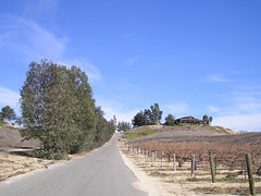 Entrance to Falkner Winery